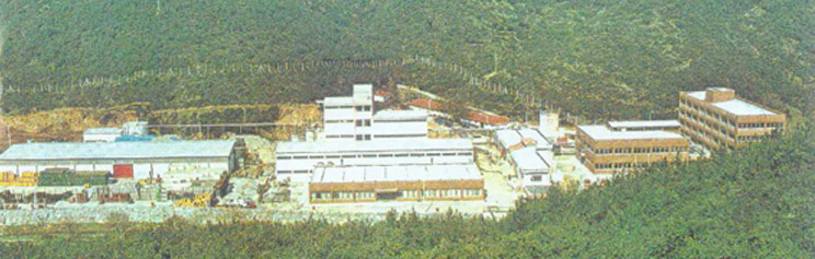 1975 - 1985, Kemerburgaz, Istanbul Headquarters